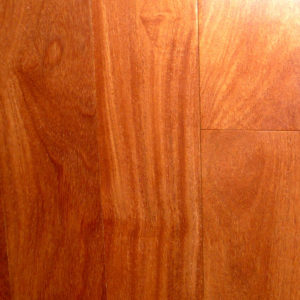 Brazilian Teak Web Large